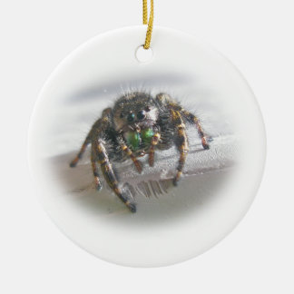 Jumping Spider Phiddipus audax Christmas Ornament