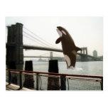 Jumping the Brooklyn Bridge Postcard