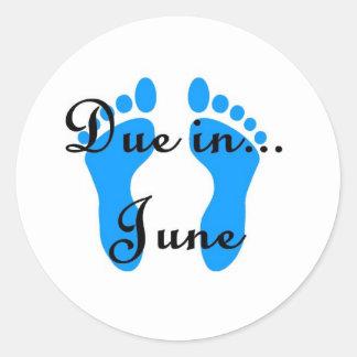 June Baby Classic Round Sticker