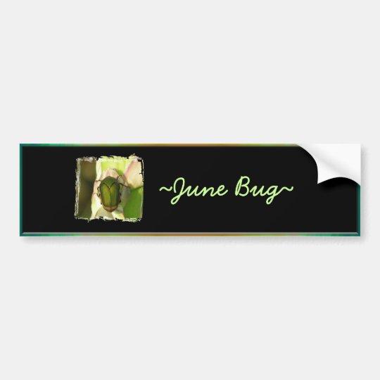 June Bug Bumper Sticker