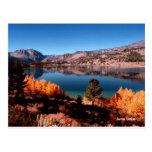 June Lake Mammoth Lakes California Postcard