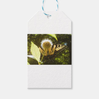 June Monarch 2017 Floral 512 Gift Tags