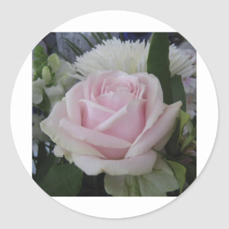 june rose classic round sticker