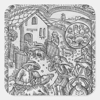 June, sheep shearing, Gemini Square Sticker