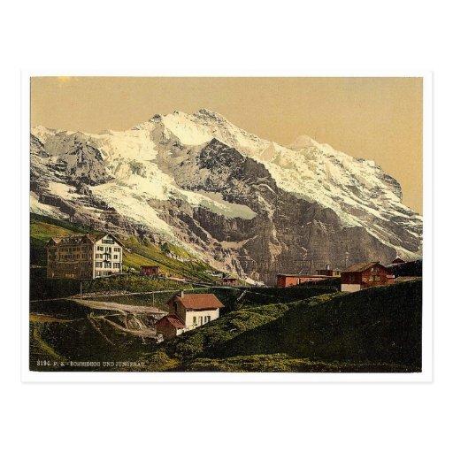 Jungfrau and Scheidegg, Bernese Oberland, Switzerl Postcards