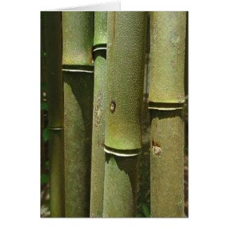 Jungle Bamboo Detail Card