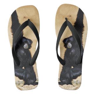 Jungle Flip Flop