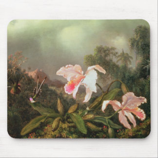 Jungle orchids and hummingbirds, 1872 mouse pad
