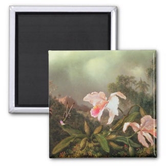 Jungle orchids and hummingbirds, 1872 square magnet
