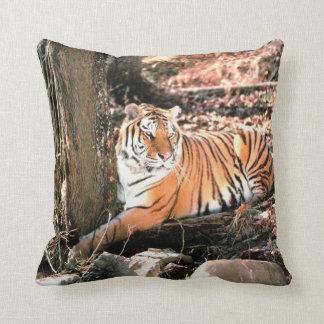 Jungle Tiger Wildlife  Photography  throw  Pillow