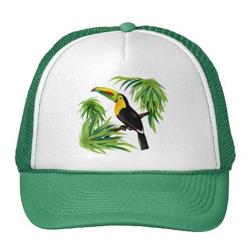 Jungle Toucan Hat