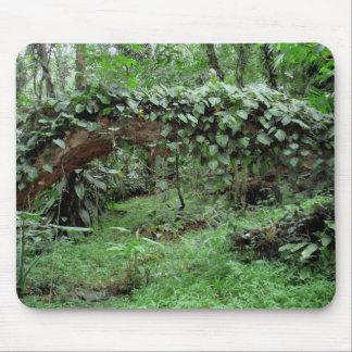 Jungle Vines Mouse Pad