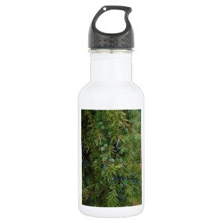 juniper green boho woodland bottle 532 ml water bottle
