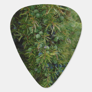 juniper woodland green cute hippy guitar pick