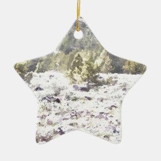 Junipers and Lava Rock in Watercolor Ceramic Star Decoration