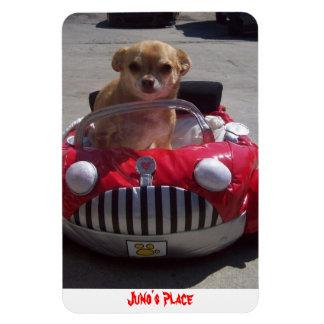 Juno Magnet