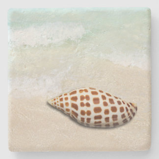 Junonia Seashell on the Beach Coasters