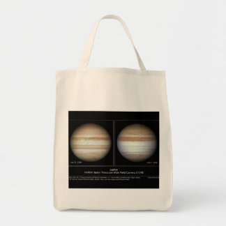 Jupiter Print June 7, 2010 Atmospheric Changes Bags
