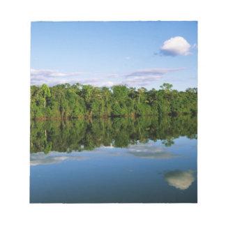 Juruena, Brazil. Forested river bank reflected Notepad