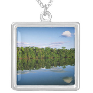 Juruena, Brazil. Forested river bank reflected Silver Plated Necklace