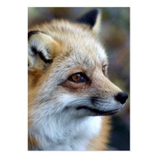 Just a cute little Fox Business Cards