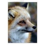 Just a cute little Fox Greeting Card