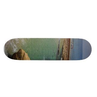 Just A Few Seals In The Cove 21.6 Cm Skateboard Deck