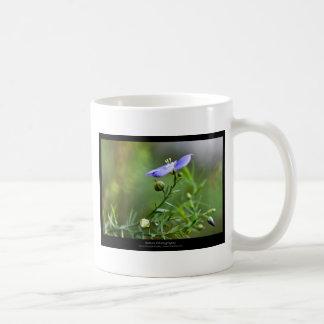 Just a flower – Blue flower 002 Coffee Mugs