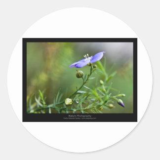Just a flower – Blue flower 002 Round Sticker