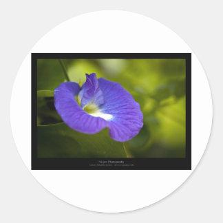 Just a flower – Blue flower 006 Round Stickers