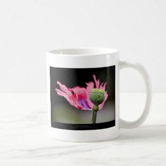Just a flower – Pink poppy flower 015 Coffee Mugs