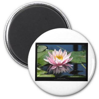 Just a flower – Pink waterlily flower 007 6 Cm Round Magnet