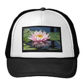 Just a flower – Pink waterlily flower 007 Mesh Hat