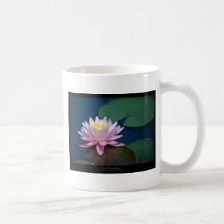 Just a flower – Pink waterlily flower 008 Basic White Mug