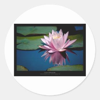 Just a flower – Pink waterlily flower 009 Round Stickers