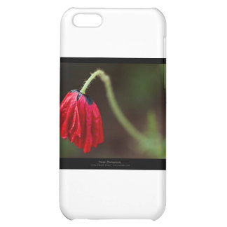 Just a flower – Red flower Poppy 012 iPhone 5C Cases