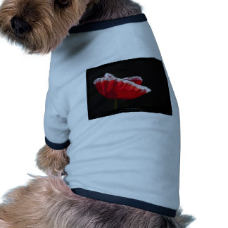 Just a flower – Red poppy flower 014 Dog Clothing