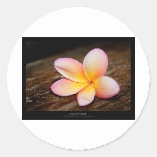 Just a flower – Simple flower 003 Round Sticker