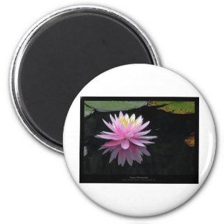 Just a flower – Waterlily flower 017 6 Cm Round Magnet