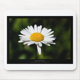 Just a flower – White daisy 005 Mousepads