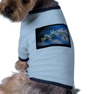 Just a flower – White flower 004 Doggie Shirt