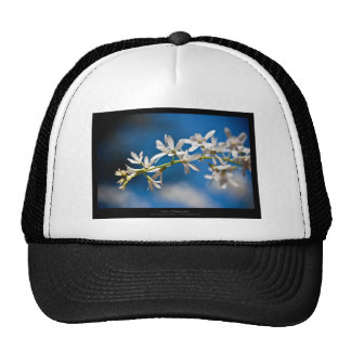 Just a flower – White flower 004 Hat
