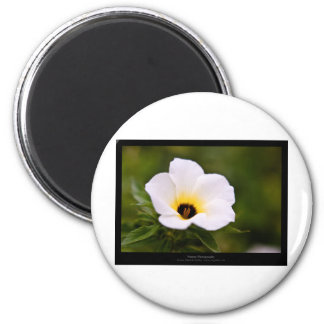 Just a flower – White flower 019 6 Cm Round Magnet