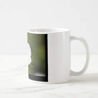 Just a flower – White flower 019 Coffee Mug