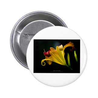 Just a flower – Yellow lily flower 016 6 Cm Round Badge