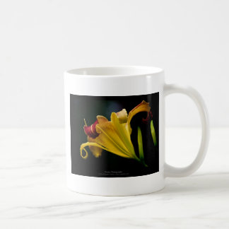 Just a flower – Yellow lily flower 016 Mug