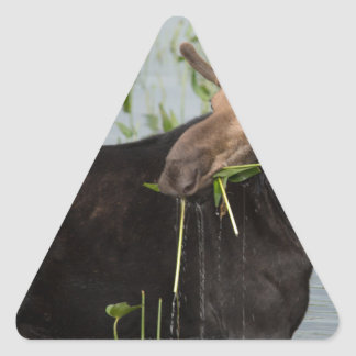 Just a Munching Triangle Stickers