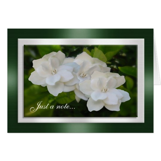 Just a note card Gardenia flowers Photography