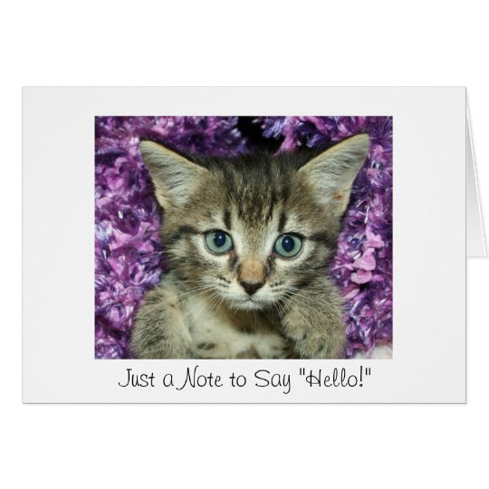 "Just a Note to Say ""Hello!"" Grey Kitten Card"