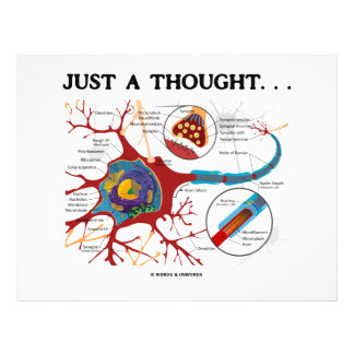 Just A Thought... (Neuron / Synapse) 21.5 Cm X 28 Cm Flyer